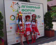 Мариуполь хочет вернуть грузопоток зерна на Азов